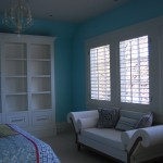 Painted Walls and Bookcase